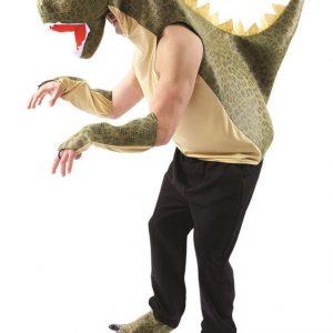 Dinosaurus Naamiaisasu