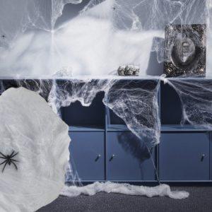 Hämähäkinseitti Hämähäkeillä Pieni