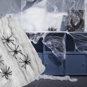 Hämähäkinseitti Hämähäkeillä Suuri