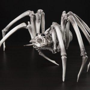 Luuranko Hämähäkki
