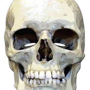 Pahvinaamari Skull Horror